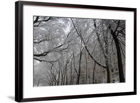Snow Covered Trees Apartments-Robert Goldwitz-Framed Art Print