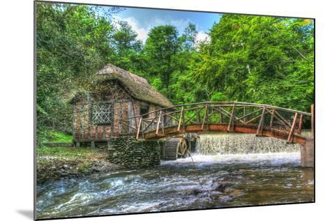 Mill House and Stream-Robert Goldwitz-Mounted Photographic Print