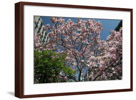 Urban Spring-Robert Goldwitz-Framed Art Print