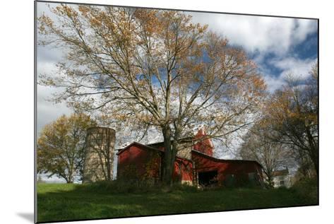 Early Spring Tree Barn-Robert Goldwitz-Mounted Photographic Print