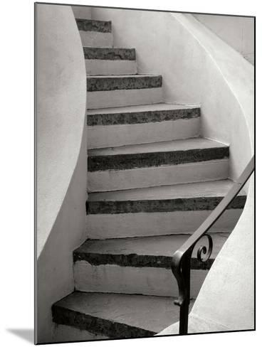 Savannah Stairwell-Jim Christensen-Mounted Photographic Print