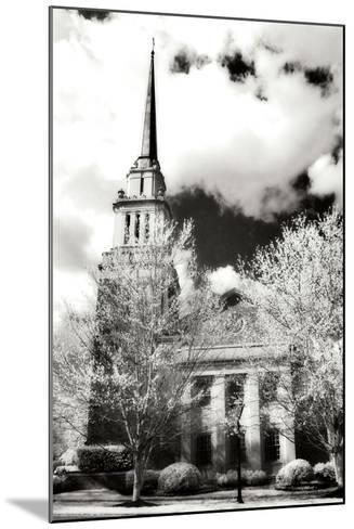 Renewal IV-Alan Hausenflock-Mounted Photographic Print