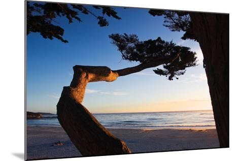 Carmel Sunset 1-Alan Hausenflock-Mounted Photographic Print