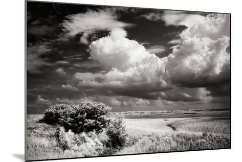 Everette Bay I-Alan Hausenflock-Mounted Photographic Print