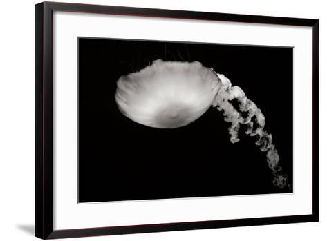 Jellyfish Glow III-Erin Berzel-Framed Art Print