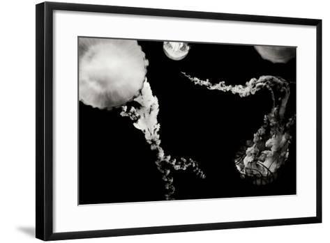 Jellyfish Glow VIII-Erin Berzel-Framed Art Print