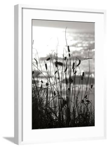 Coastal Grass I-Erin Berzel-Framed Art Print