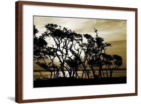 Blissful Shore II-Alan Hausenflock-Framed Art Print