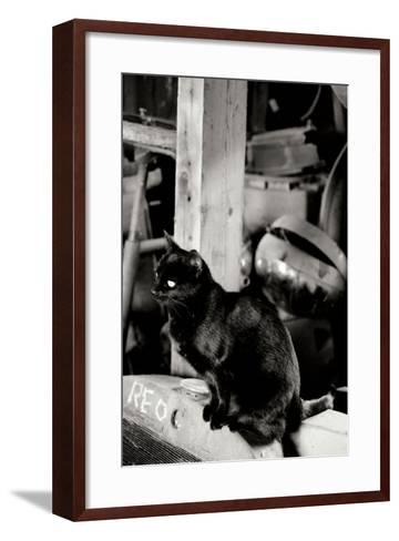 Farm Cat-Erin Berzel-Framed Art Print