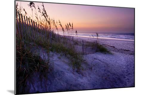 Lavender Beach I-Alan Hausenflock-Mounted Photographic Print