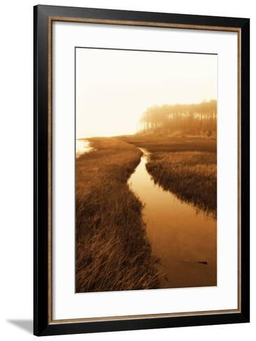 Harker's Island Marsh I-Alan Hausenflock-Framed Art Print