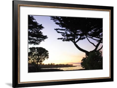 Sunset on Pacific Grove-Alan Hausenflock-Framed Art Print