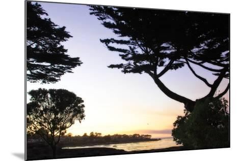 Sunset on Pacific Grove-Alan Hausenflock-Mounted Photographic Print
