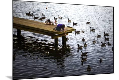 Feeding the Geese IV-Alan Hausenflock-Mounted Photographic Print