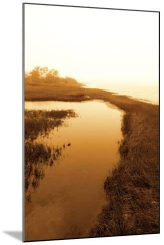 Harker's Island Marsh II-Alan Hausenflock-Mounted Photographic Print