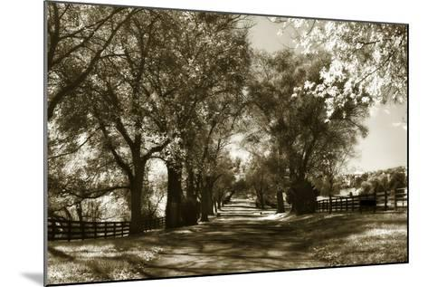 Autumn Foothills 6-Alan Hausenflock-Mounted Photographic Print