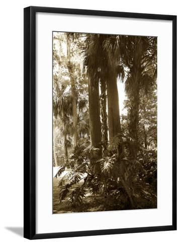 Tropical Garden 2-Alan Hausenflock-Framed Art Print