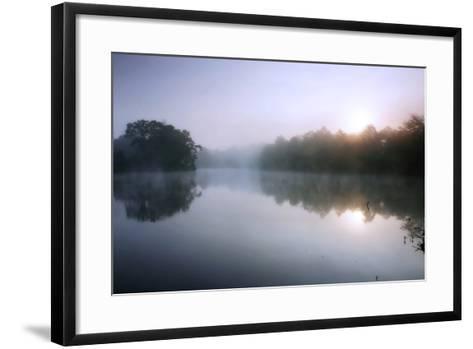 Fog on the Mattaponi 8-Alan Hausenflock-Framed Art Print