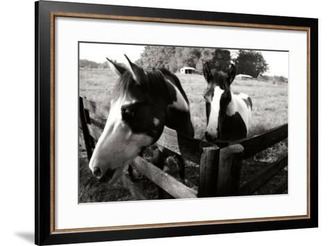 Stormy and Foal 1-Alan Hausenflock-Framed Art Print