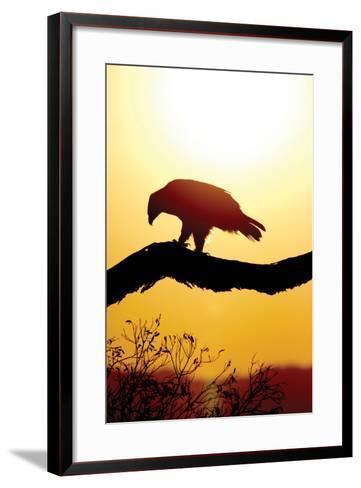 Tawny Sunrise-Susann Parker-Framed Art Print