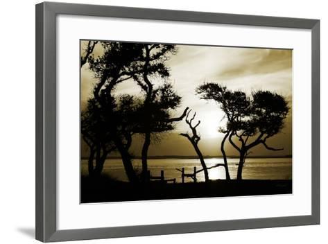 Blissful Shore I-Alan Hausenflock-Framed Art Print