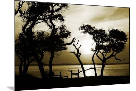 Blissful Shore I-Alan Hausenflock-Mounted Photographic Print