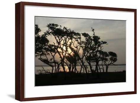 Beaufort II-Alan Hausenflock-Framed Art Print