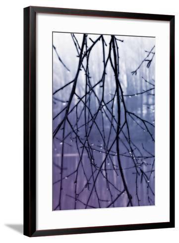 Droplets II-Alan Hausenflock-Framed Art Print