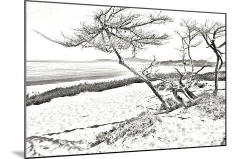Carmel Beach IV-Alan Hausenflock-Mounted Photographic Print
