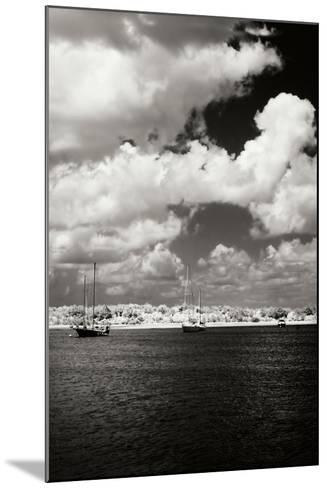 Everette Bay IV-Alan Hausenflock-Mounted Photographic Print