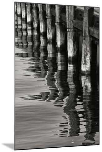 Pier Pilings 8-Lee Peterson-Mounted Photographic Print