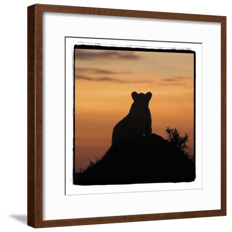 Radiant Africa 3-Susann Parker-Framed Art Print