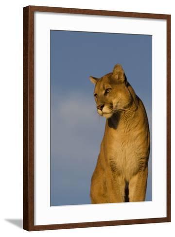 The Perfect View-Susann Parker-Framed Art Print