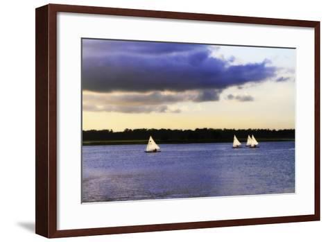 Sunfish Sailors I-Alan Hausenflock-Framed Art Print