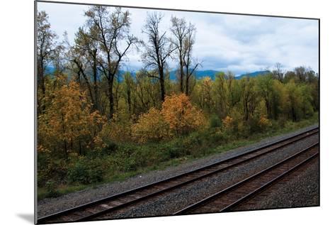 Union Pacific IV-Erin Berzel-Mounted Photographic Print