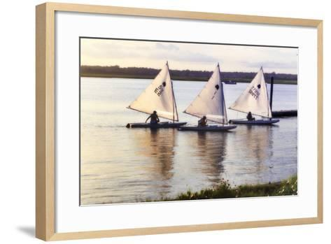Three Sunfish I-Alan Hausenflock-Framed Art Print