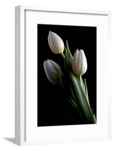 Tulips IV-C^ McNemar-Framed Art Print