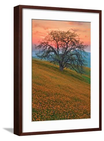 Rancheria-Mark Geistweite-Framed Art Print