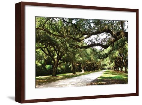 Charleston Oaks 4-Alan Hausenflock-Framed Art Print