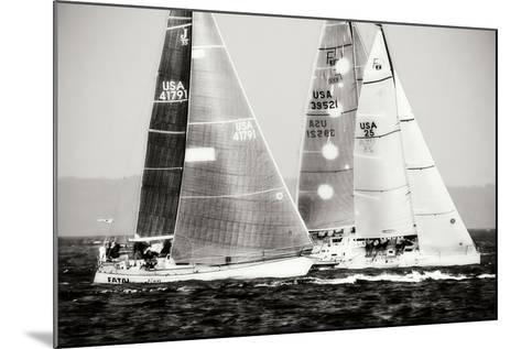 Race on the Chesapeake III-Alan Hausenflock-Mounted Photographic Print
