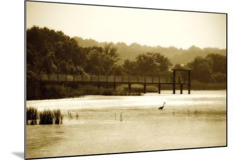 Lagoon I-Alan Hausenflock-Mounted Photographic Print