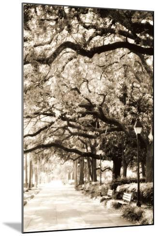 Savannah Sidewalk Sepia I-Alan Hausenflock-Mounted Photographic Print