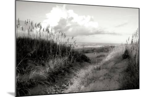 Dunes I BW-Alan Hausenflock-Mounted Photographic Print