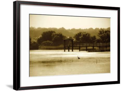 Lagoon II-Alan Hausenflock-Framed Art Print