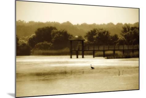 Lagoon II-Alan Hausenflock-Mounted Photographic Print