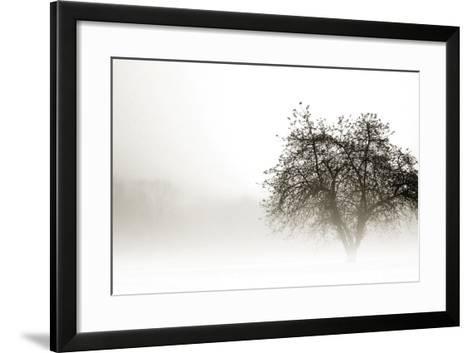 In the Mist I-Alan Hausenflock-Framed Art Print