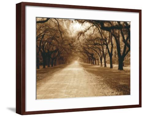 Savannah Oaks II-Alan Hausenflock-Framed Art Print