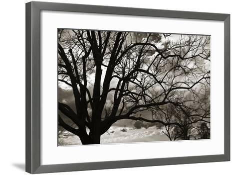 Approaching Storm II-Alan Hausenflock-Framed Art Print