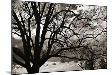 Approaching Storm II-Alan Hausenflock-Mounted Photographic Print