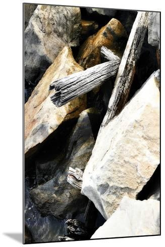 Rocks and Wood I-Alan Hausenflock-Mounted Photographic Print